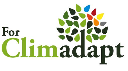 为国际地中海森林协会(association Internationale Forêts Méditerranéennes)实现法语英语翻译