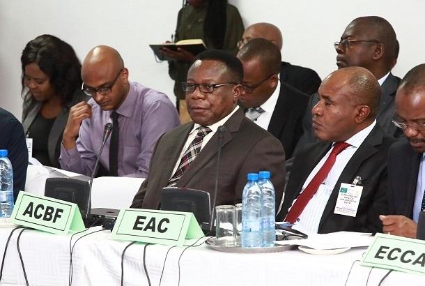 翻译非洲能力建设基金会的经济文件